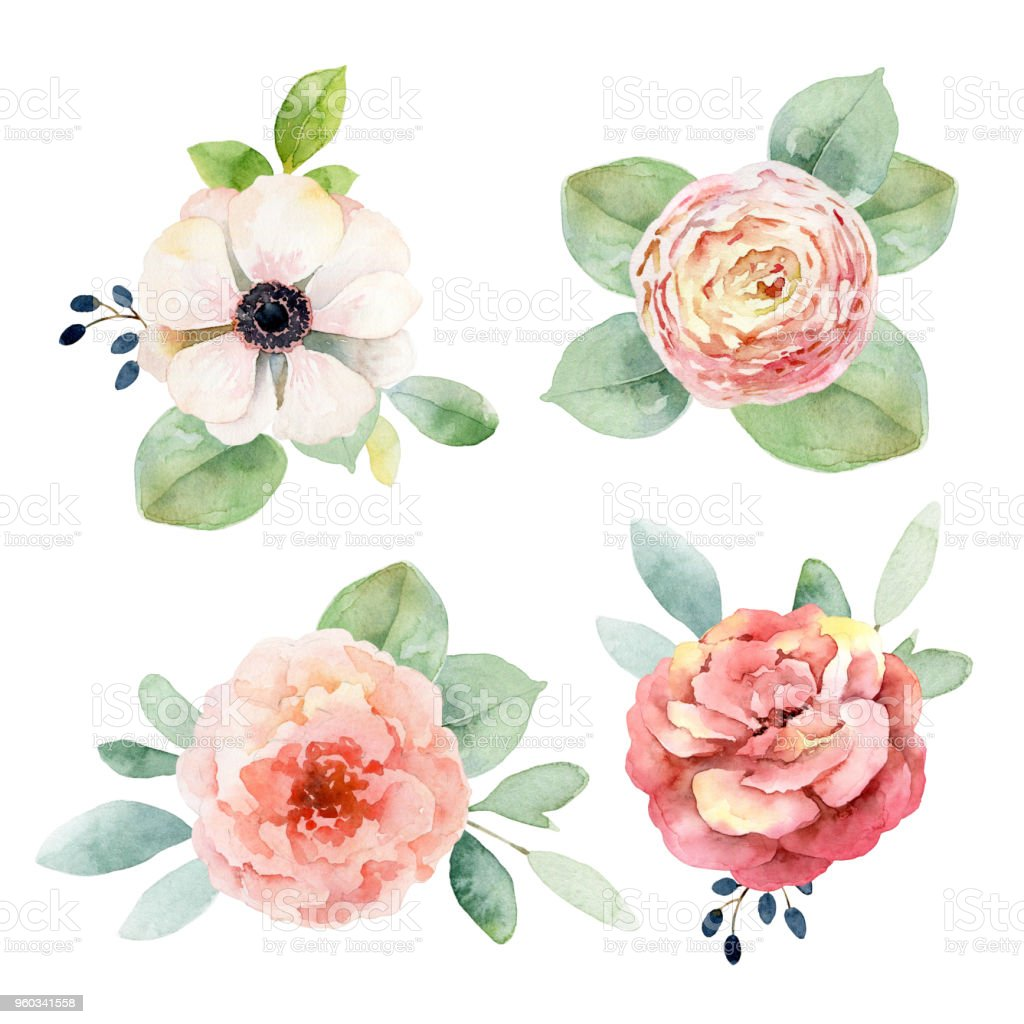Set boutonnieres with anemones and roses vector art illustration