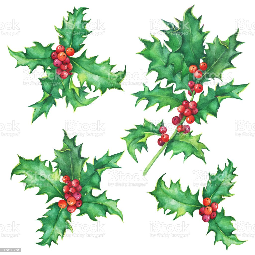 Set Holly Twig Holiday Traditional Christmas Decoration For Greeting