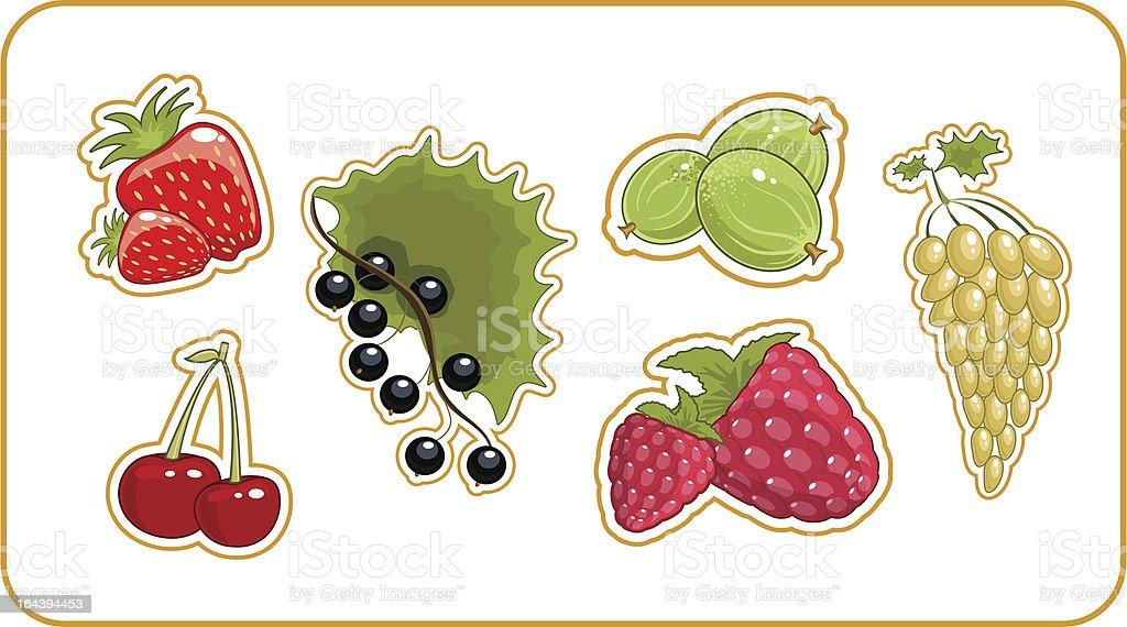 set of berries royalty-free stock vector art