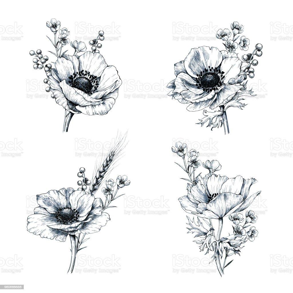 Set of hand drawn anemone boutonnieres. vector art illustration