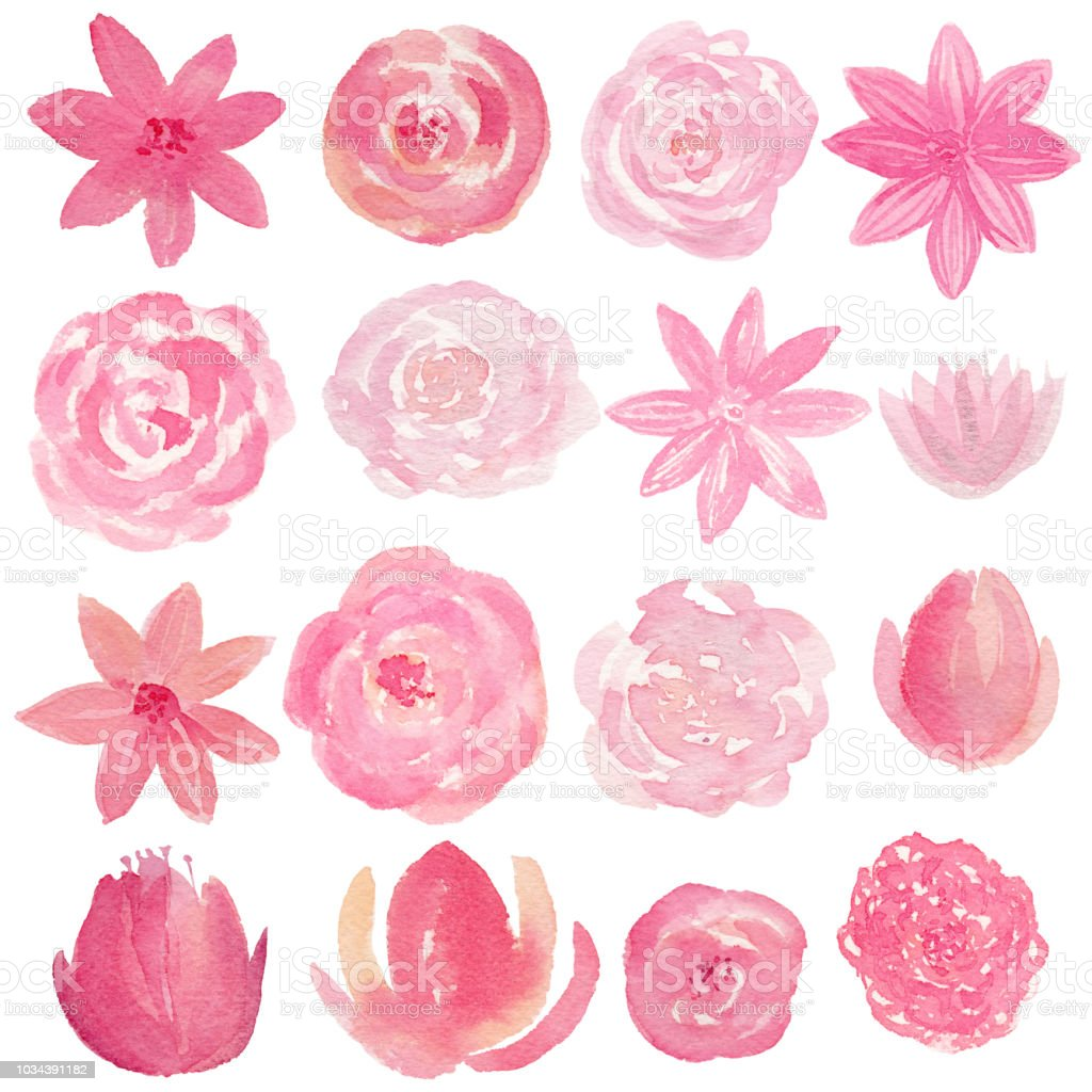 Set Of Hand Painted Watercolor Flowers In Pink Color Stock Vector