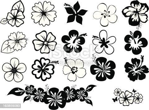 set of icons of hibiscus and plumeria