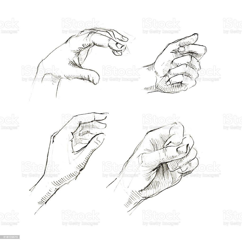 Set Of Human Hands Sketch Stock Vector Art & More Images of Anatomy ...