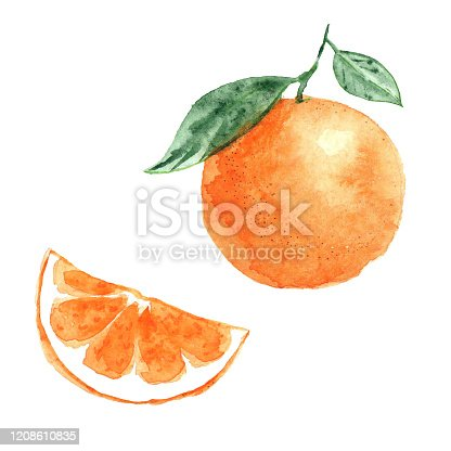 Set of orange and orange slice with leaves watercolor illustration isolated on white background, packaging design element.