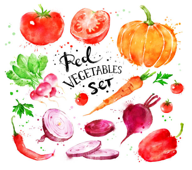 赤野菜のセット ベクターアートイラスト