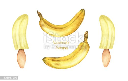 Set of ripe bananas and banana with ice cream stick isolated on white background. Hand drawn watercolor illustration.