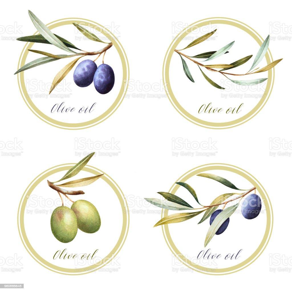 Set of round olive oil labels. vector art illustration