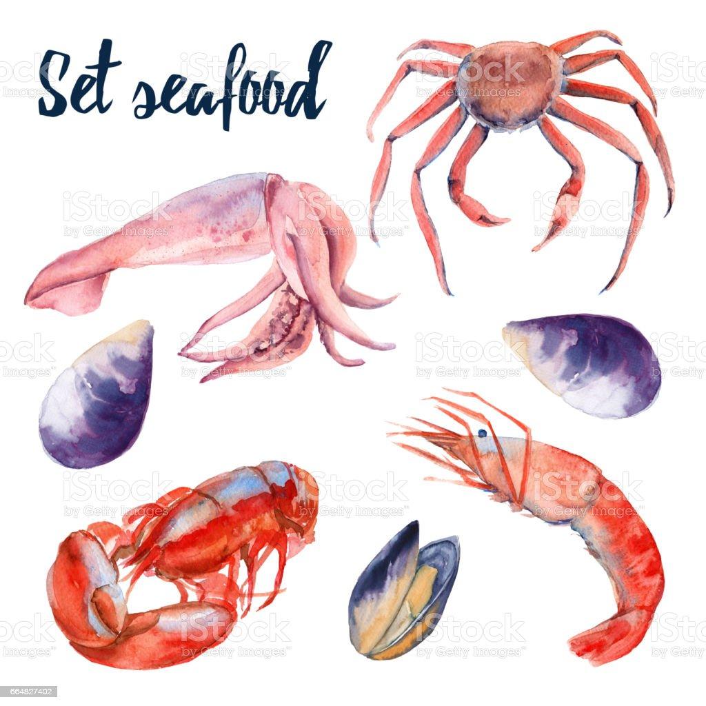 Deniz ürünleri Kümesi Yengeç Karides Istakoz Midye Ve Kalamar Beyaz