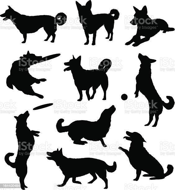 Set of ten black silhouetted dogs illustration id164400484?b=1&k=6&m=164400484&s=612x612&h=jnbok0951tqlafwogeijmp6fj2frsrj6mj8g8fpm5we=
