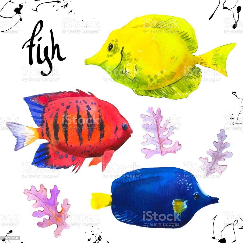 Set Of Tropical Marine Fish Watercolor Illustration With Hand Drawn ...