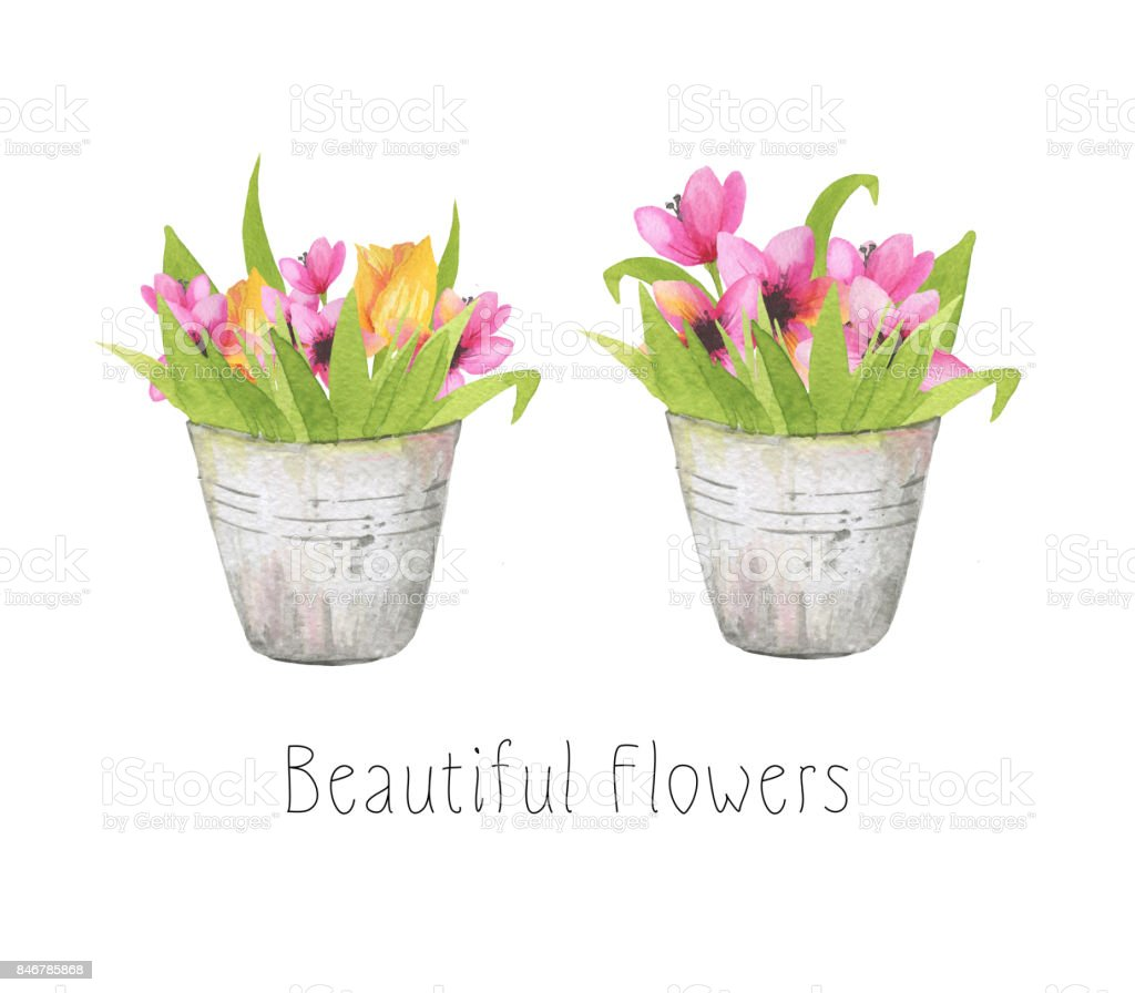 Set Of Two Beautiful Flower Bouquets With Fresh Flowers In Blossom