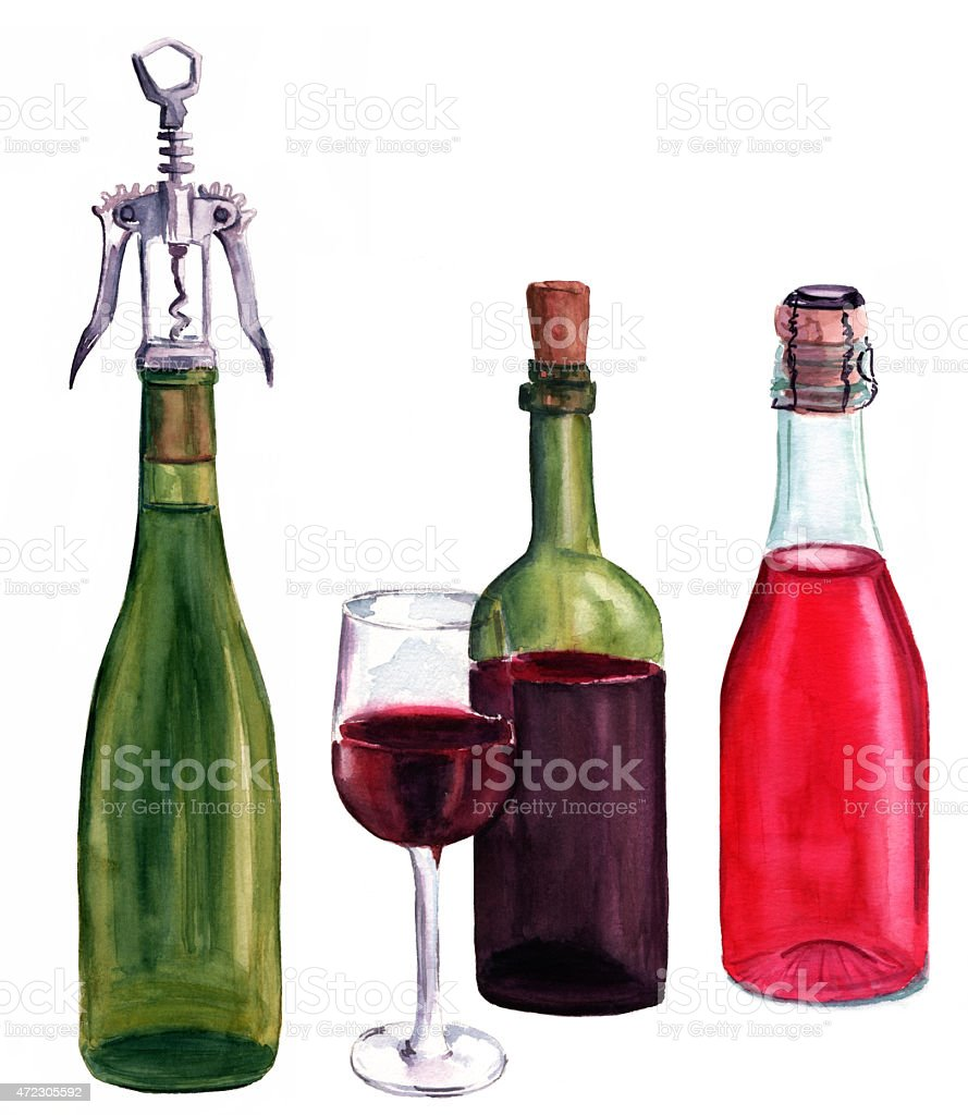 Set of unbranded watercolour wine bottles on white background vector art illustration