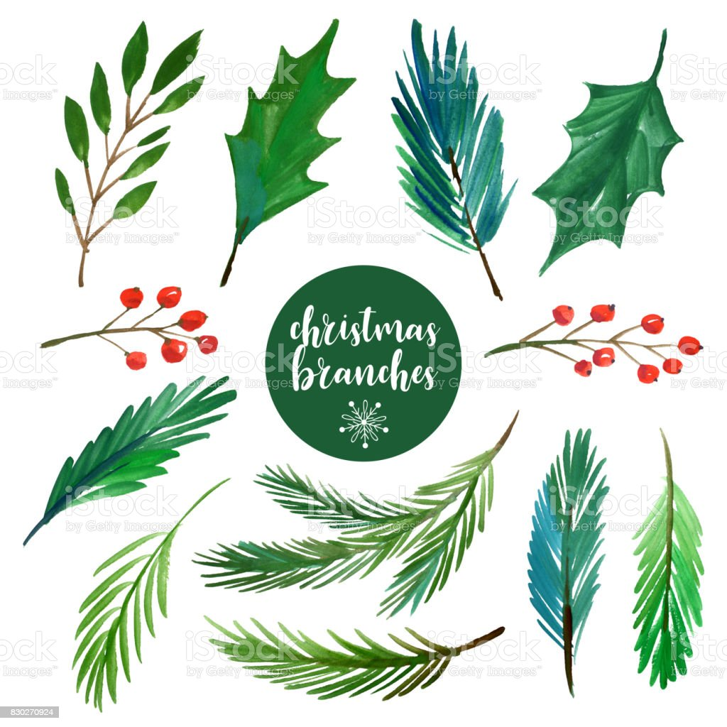 set of watercolor christmas branches vector art illustration