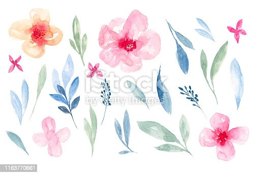 Hand drawn watercolor illustrations, Botanical clipart, Floral Design elements, Watercolor Painting, Drawing - Activity, Painted Image, Watercolor Paints, Watercolor Leaves
