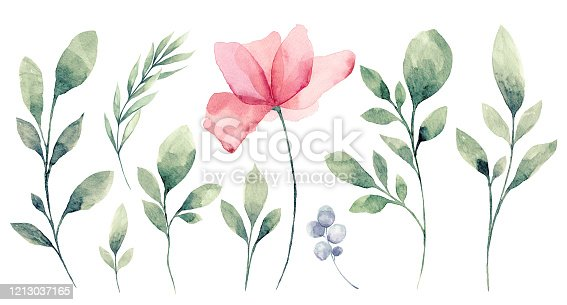 istock Set of watercolor Flower and green leaves 1213037165