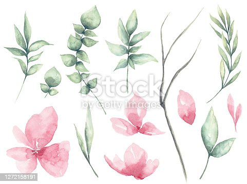 istock Set of watercolor Flower and green leaves 1272158191