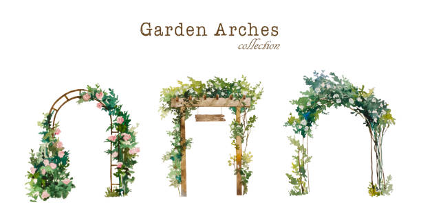 Set of watercolor garden arches with blooming white and pink roses. Original illustration for wedding environment and landscape design Set of watercolor garden arches , wooden and metal, with blooming white and pink roses. Original illustration for wedding environment and landscape design, isolated on white background natural arch stock illustrations