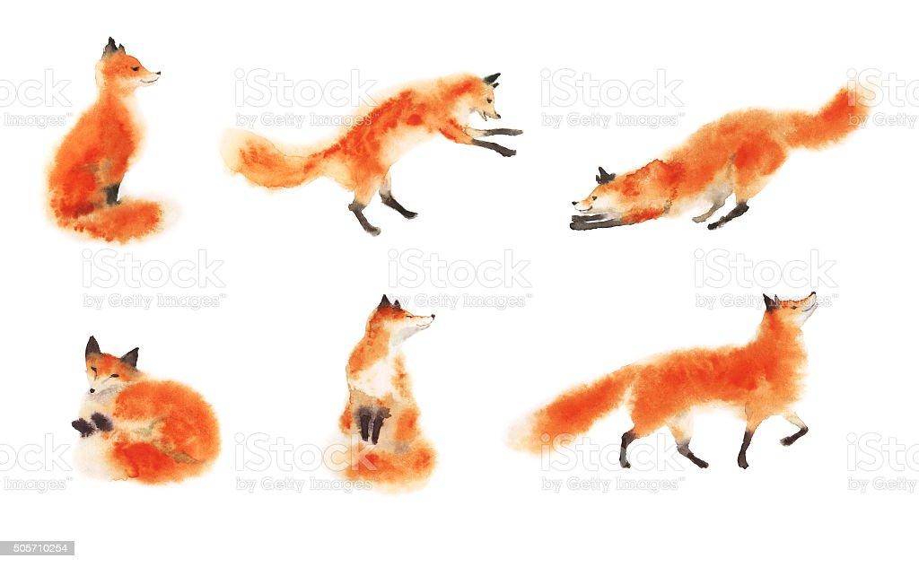 Juego de acuarela rojo suave foxes in motion sobre blanco - ilustración de arte vectorial