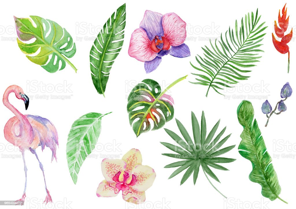 Set of watercolor tropical flowers and leaves. royalty-free set of watercolor tropical flowers and leaves stock vector art & more images of art