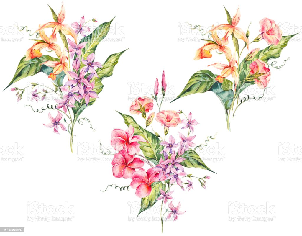 Set Of Watercolor Tropical Vintage Floral Bouquet Of Exotic Flowers ...