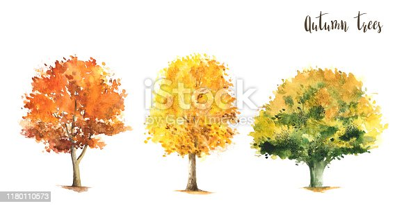 Set of yellow, green, red watercolor trees. Outdoor colorful plants collection.
