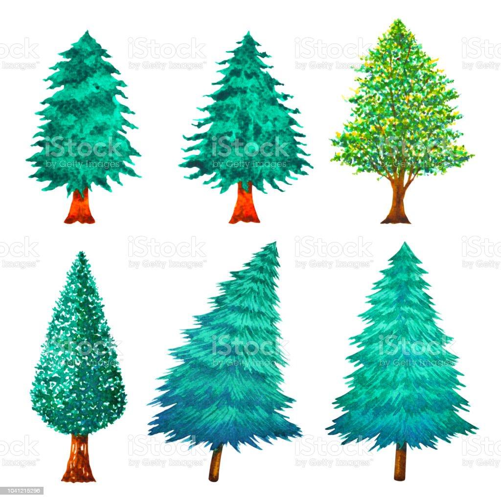 Ilustración De Pino árbol Navidad Acuarela Ilustración Mano Dibujo Y