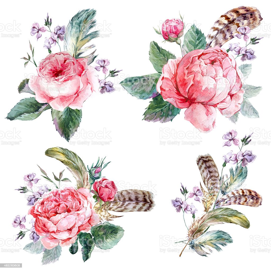 Set vintage watercolor bouquet of roses feathers and wildflowers vector art illustration