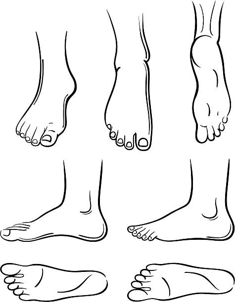 Best Sole Of Foot Illustrations, Royalty-Free Vector