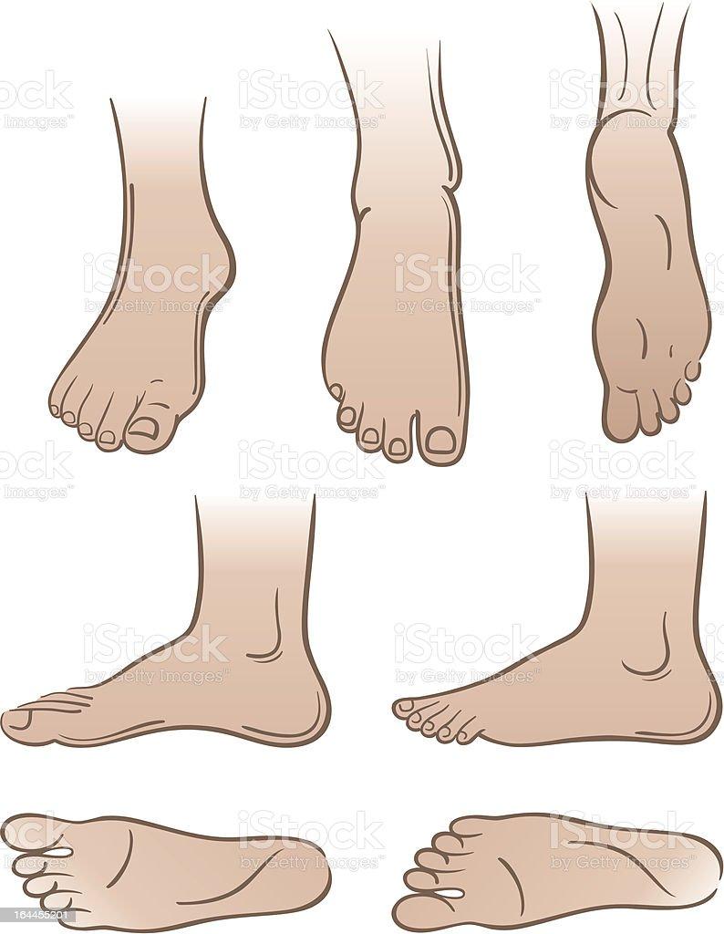 Seven man feet isolated on white background vector art illustration