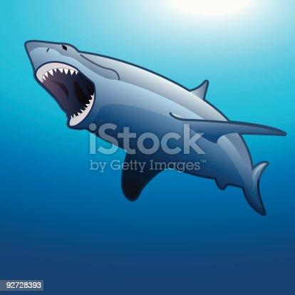 istock Shark 92728393