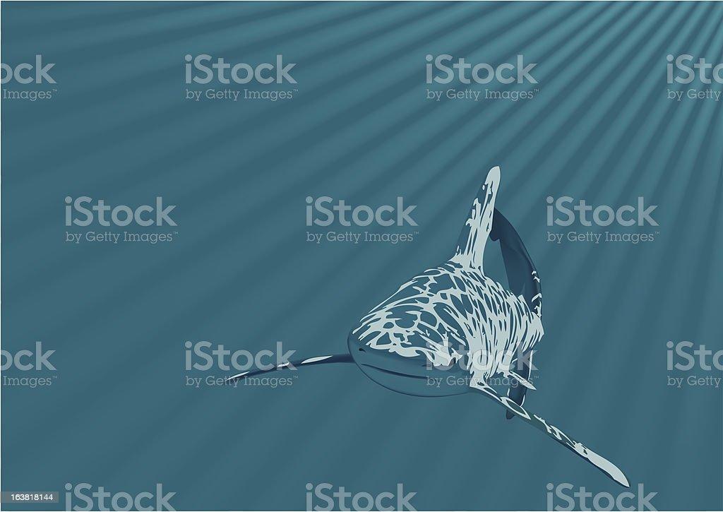 Shark in an ocean royalty-free stock vector art