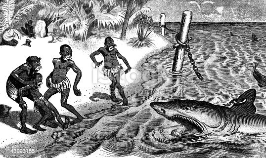 Shark is attacking the natives in Africa - 1896