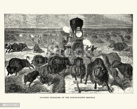 Vintage engraving of Shooting buffaloes on the Kansas Pacific Railway, 19th Century