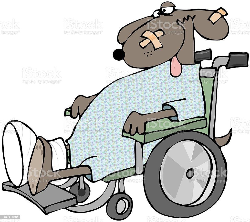 Sick Dog In A Wheelchair vector art illustration