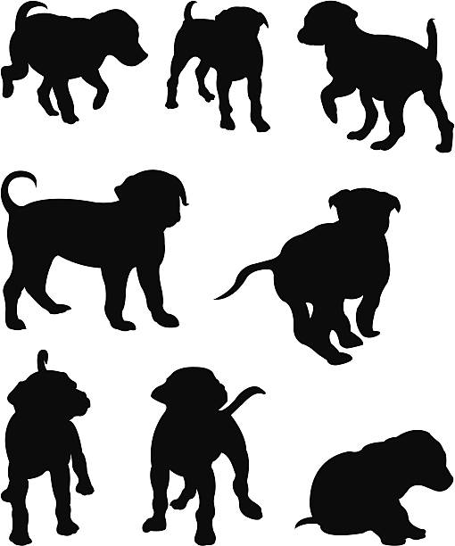 Silhouette dogs vector illustration of silhouette dogs vertebrate stock illustrations