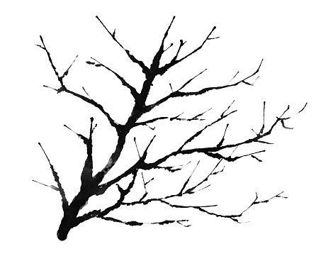 silhouette illustration of a dead tree
