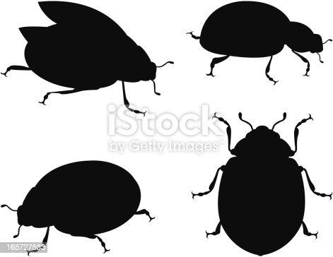 vector illustration of silhouette ladybug