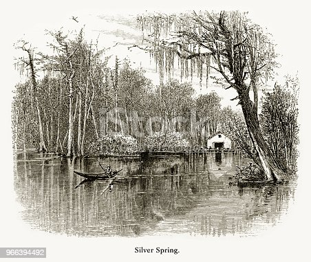 Very Rare, Beautifully Illustrated Antique Engraving of Silver Spring in the Ocklawaha River and Swamp, Florida Swamp, Florida, United States, American Victorian Engraving, 1872, 1872. Source: Original edition from my own archives. Copyright has expired on this artwork. Digitally restored.