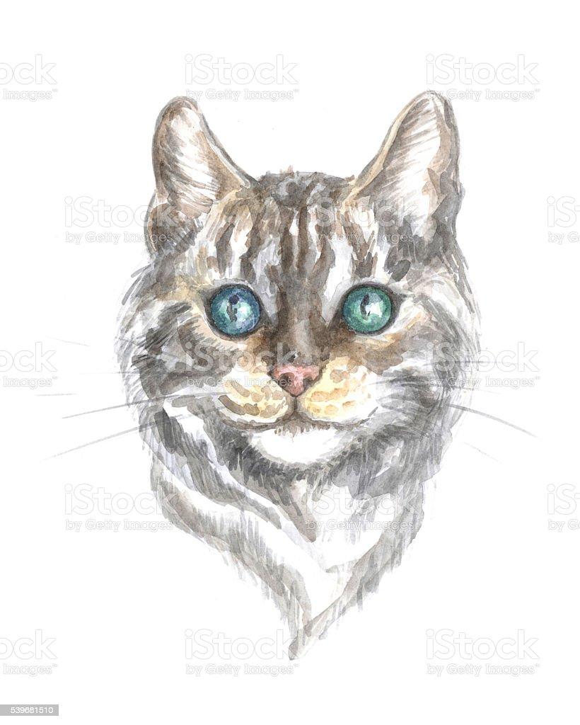Srebrny Pręgowany Kot Bengalski Stockowe Grafiki Wektorowe I