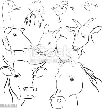 simple vector illustrations animals