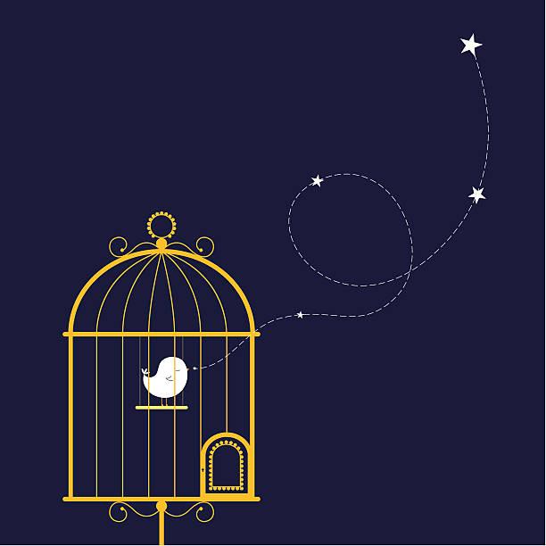 illustrations, cliparts, dessins animés et icônes de chant des oiseaux en cage dorée - cage animal nuit