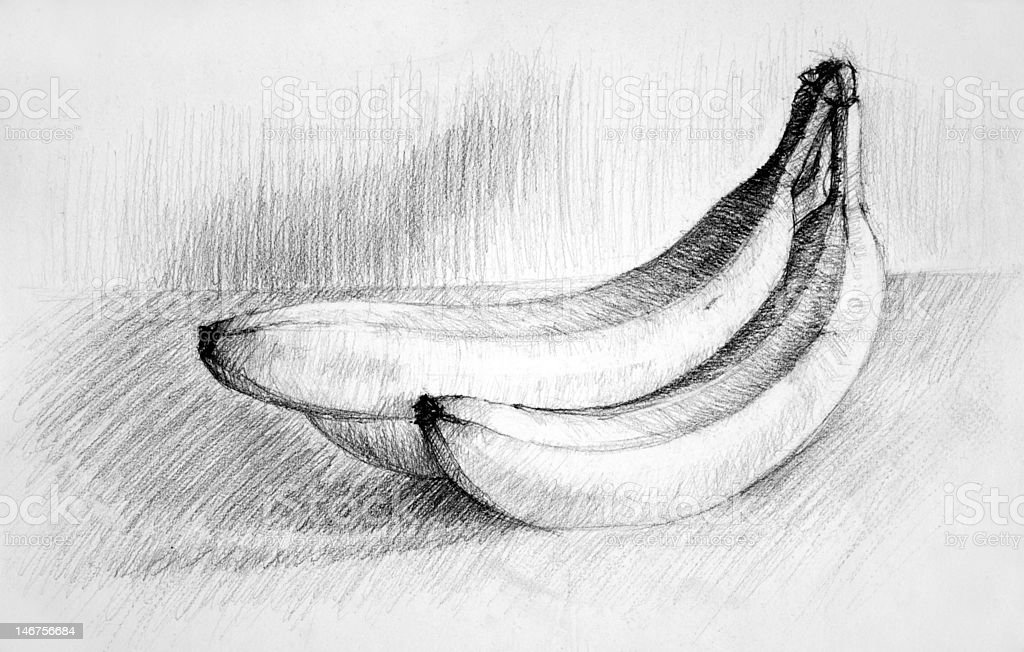Sketch From A Bunch Of Bananas Royalty Free Stock