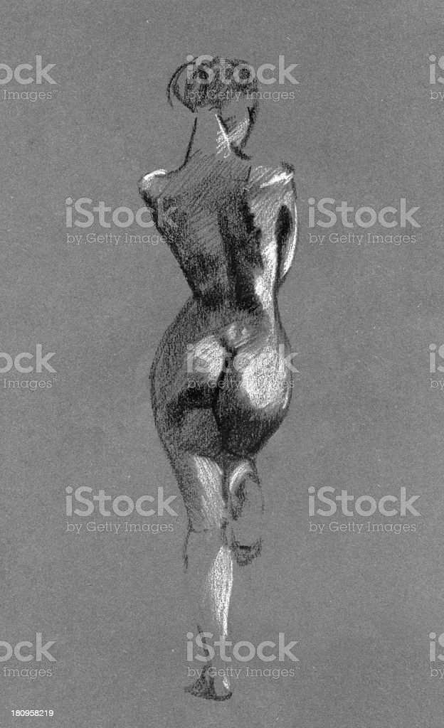 Sketch in charcoal and chalk of nude woman body vector art illustration