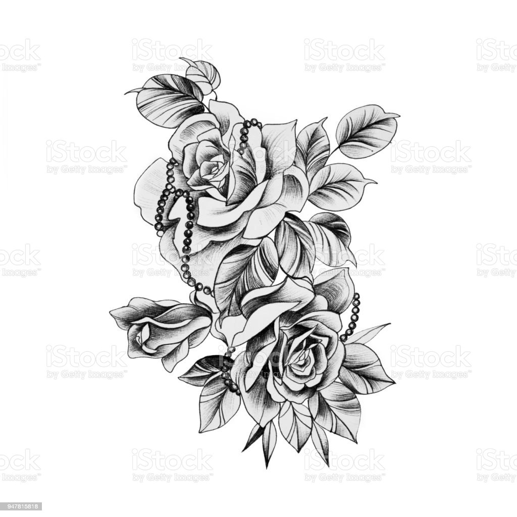 This is an image of Soft Beautiful Rose Drawing