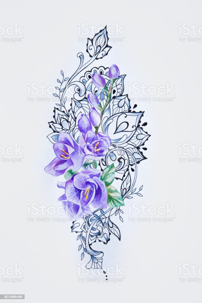 0ec2cdeeb A sketch of a beautiful violet freesia in patterns on a white background. -  Illustration .