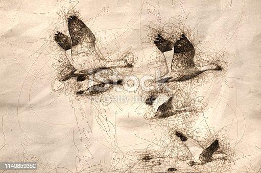 Sketch of a Flock of Snow Geese in Flight