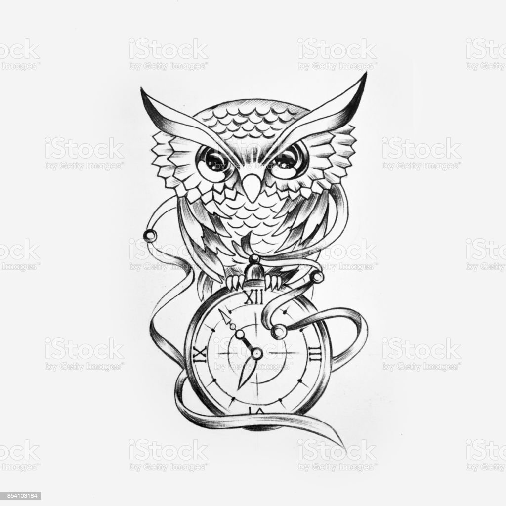 Sketch of a wise owl with a watch on a white background. vector art illustration