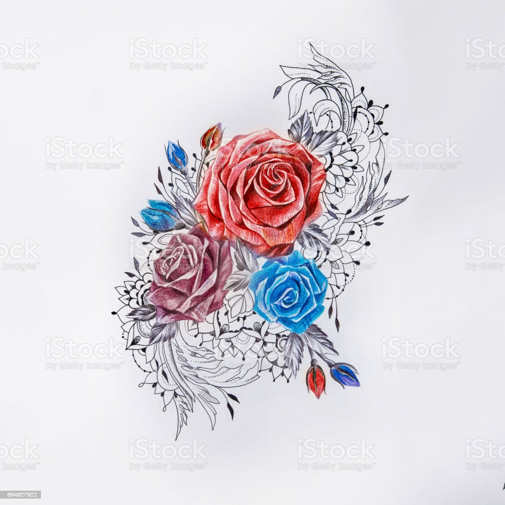 Sketch of beautiful colorful roses on a white background. vector art illustration