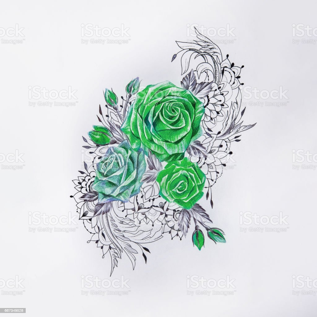 Sketch of beautiful green roses on a white background. vector art illustration