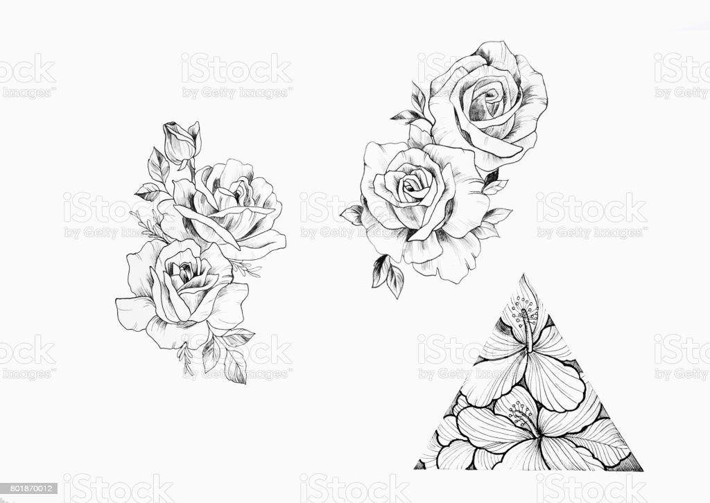 Ilustrao de desenho de ramo de lindas rosas e tringulo com flores desenho de ramo de lindas rosas e tringulo com flores sobre fundo branco ilustrao de fandeluxe Image collections